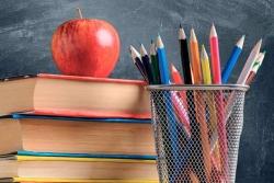 Ajuts material, sortides escolars i activitats esportives 2020-2021